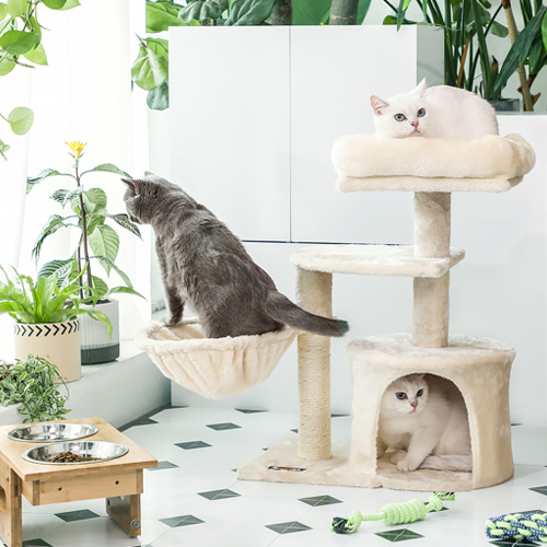 Pamper your kitties with our best cat supplies.